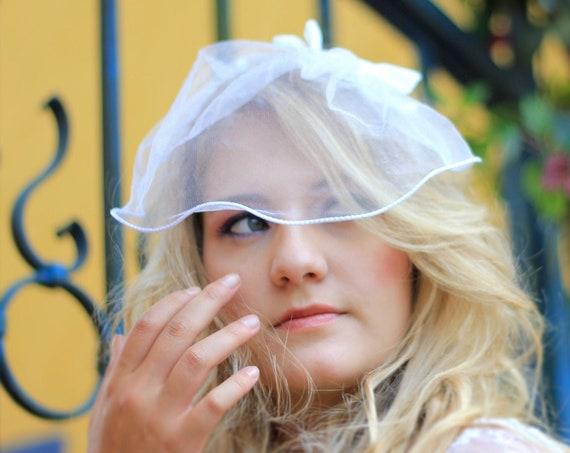 Vintage style blusher tulle birdcage veil adorned with a velvet bow