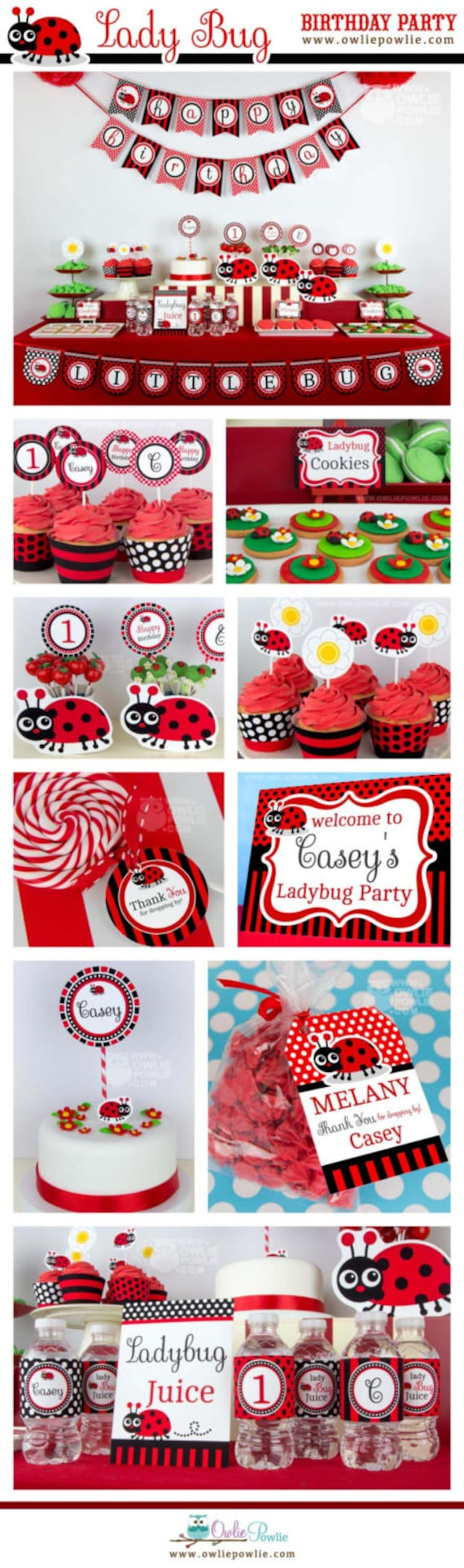Lady Bug BIRTHDAY Party Printable Package & Invitation | Etsy