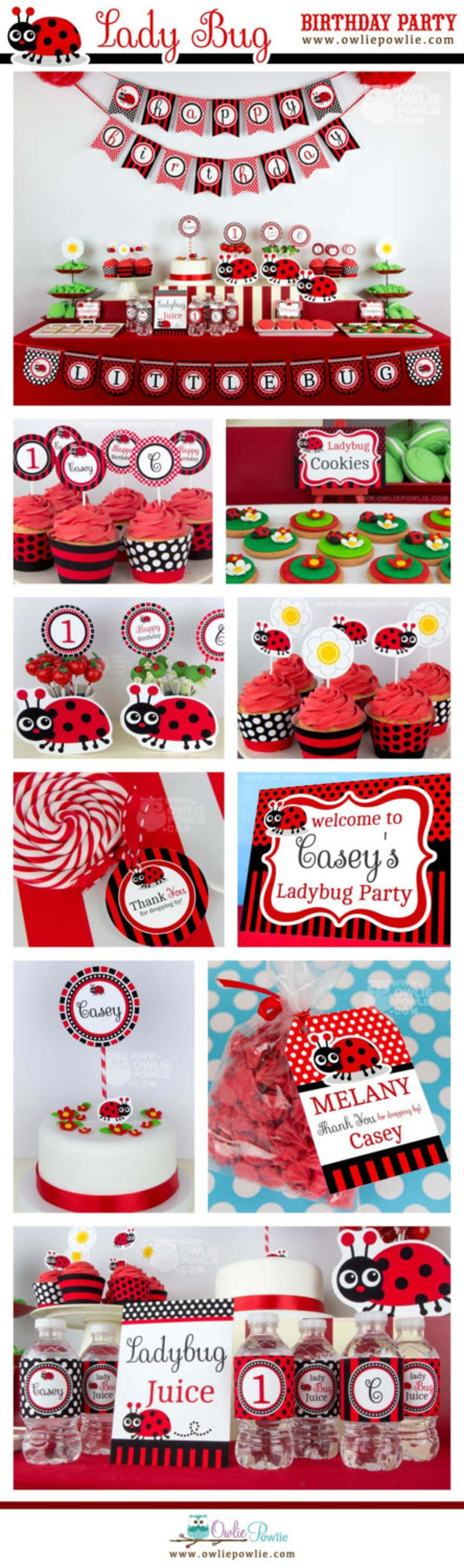 Lady Bug BIRTHDAY Party Printable Package Invitation