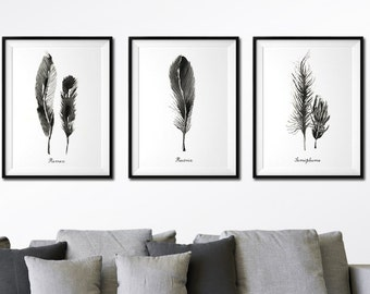 Feather wall art watercolor art Living room wall art Set of 3 feather print Black and white print Bird feather art Nature art Feather poster
