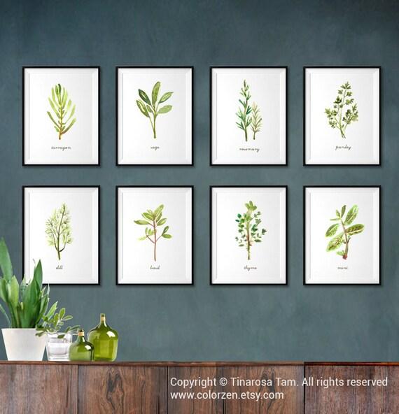 Herb stampe acquerello pittura, cucina parete Art Botanical Print Set di 4  molle Decor, iscriviti grafico botanica timo basilico rosmarino stampa