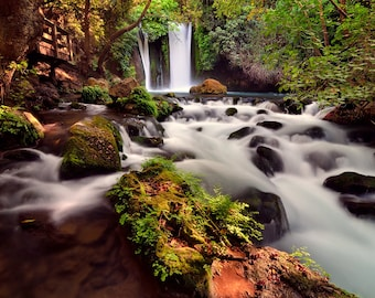 Early morning light, Landscape Photography, Wall Decor, Nature, Banias River Israel, Fine Art Photograph, waterfall