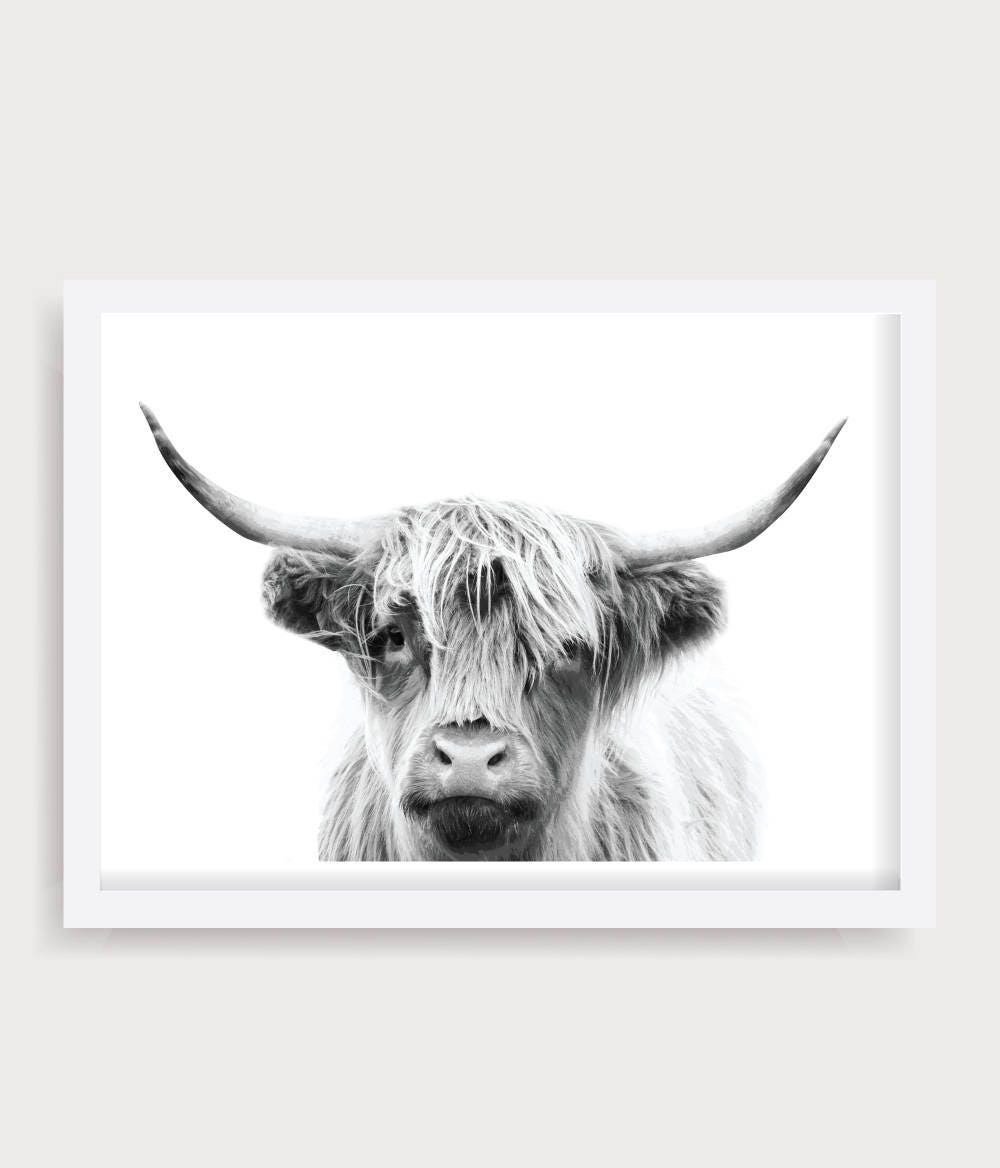7c0ba973c4b Highland Cow Wall Art Black and White Cow Print Cattle
