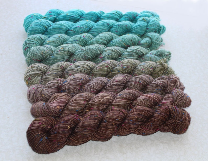 Gradient Yarn SWEATER SET Hand dyed Donegal BFL yarn  in seacoast