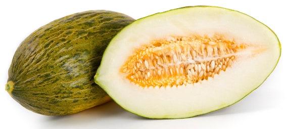 SANTA CLAUS Cantaloupe Seeds 20 Seeds Light Green Flesh
