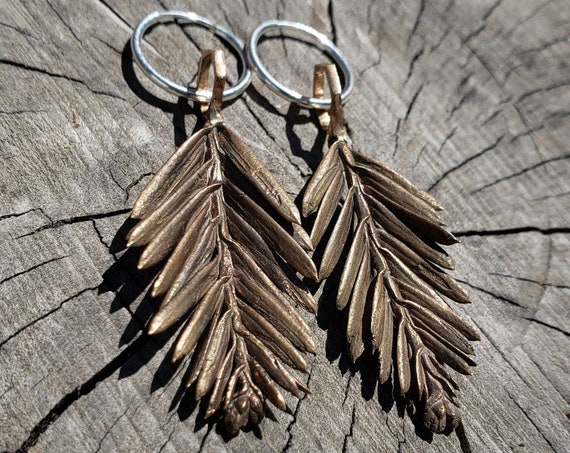 Redwood Leaf and Hexagon Cast Bronze Earrings