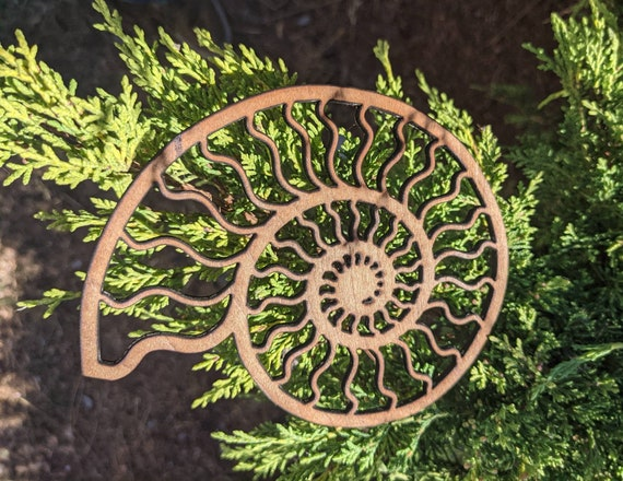 Ammonite Lasercut Wood Wall Art or Crystal Grid - Nautilus Spiral Shell in Reclaimed Upcycled Black Walnut Faced Plywood