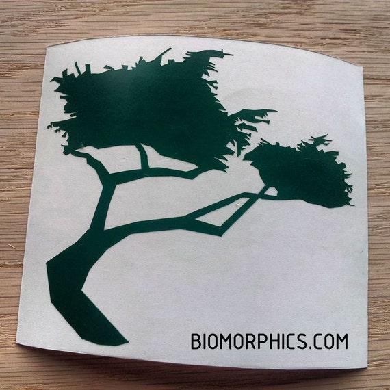 Monterey Cypress CNC Cut Vinyl Sticker