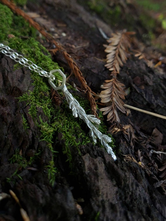 Redwood Growing Tip Hexagon Cast Sterling Silver Necklace with Chain - Redwood Forest Leaf Jewelry - NorCal PNW West Coast Upper Left USA