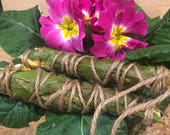 Smudging Bundle: Cleansin...