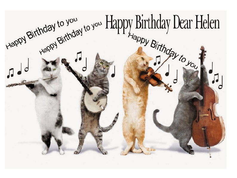 Funny Cute Personalised Cats Singing Band Birthday Card