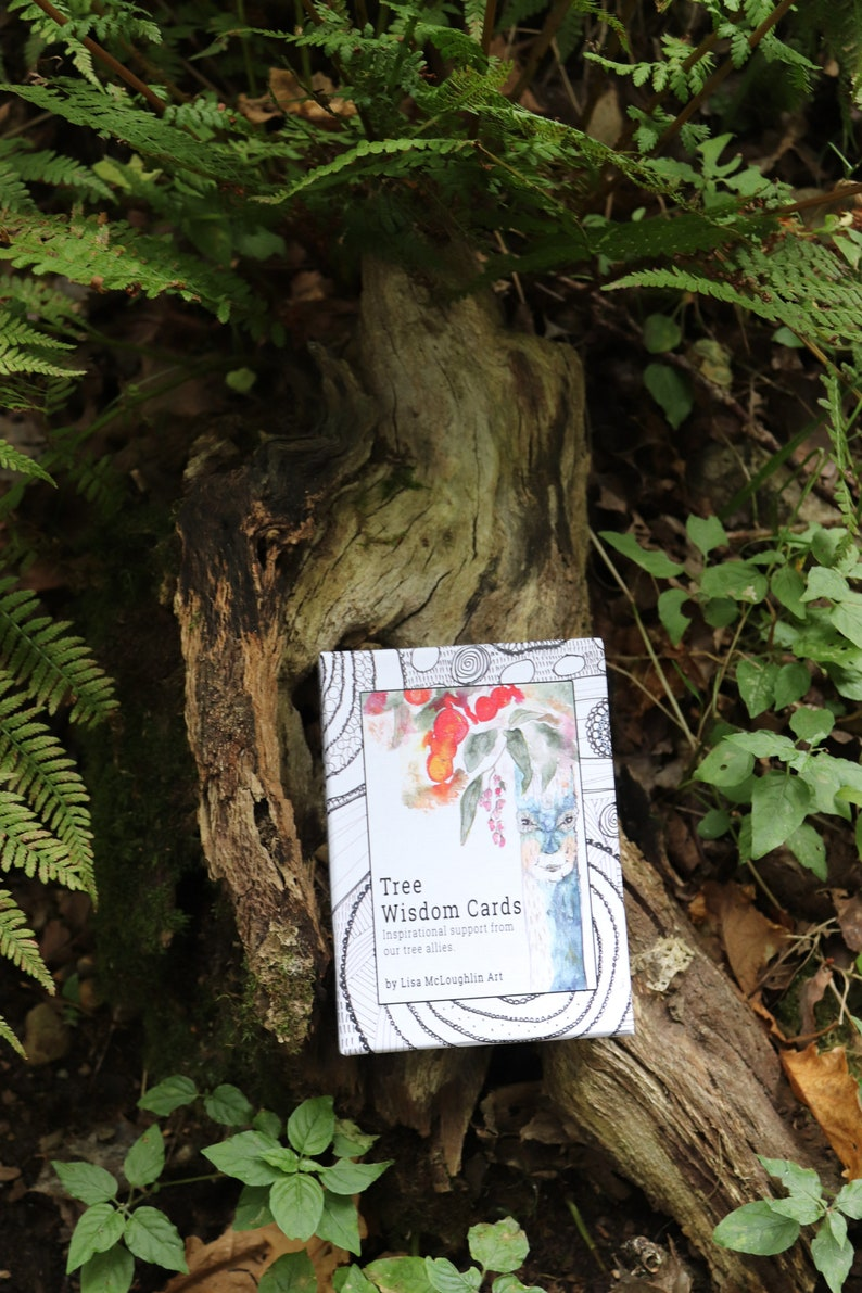 Tree Wisdom Cards with new rigid box image 0