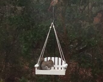 Squirrel or Bird Feeder