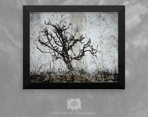 Framed Art Poster Framed Tree Print Tree Artwork Decor Wall Print Contemporary Art Print Framed Unique Tree Art Photo Art Digital Painting