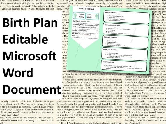 items similar to printable birth plan template editable microsoft word document docx info graphic visual aid