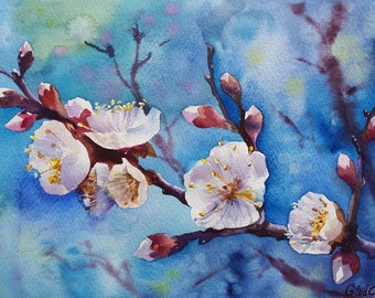 Apricot Flowers Original Painting Flowers Botanical Painting White Flowers  Watercolor Painting  Flowers Artwork