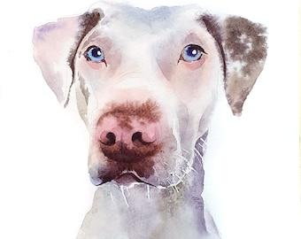 White Weimaraner Painting Watercolor Dog Portrait From Photo Original Pet Painting Portrait  Custom Pet Portrait Artwork Dog Art