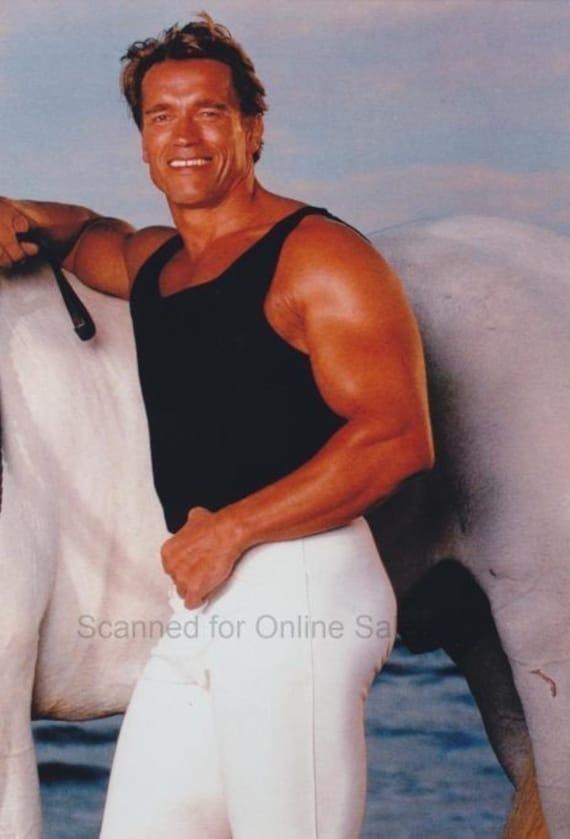 Arnold Schwarzenegger With Horse 4x6 Photo