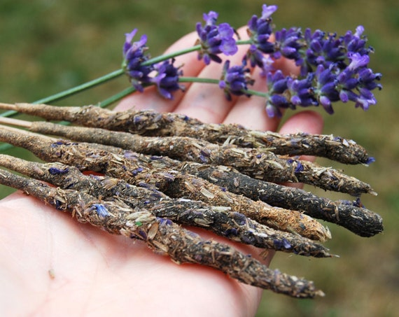 Lavender and Patchouli Incense, Homemade Artisan Incense, All Natural Hand rolled Incense Sticks, Meditation and Relaxation