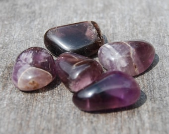 One Amethyst Tumbled Polished Small FREE Shipping