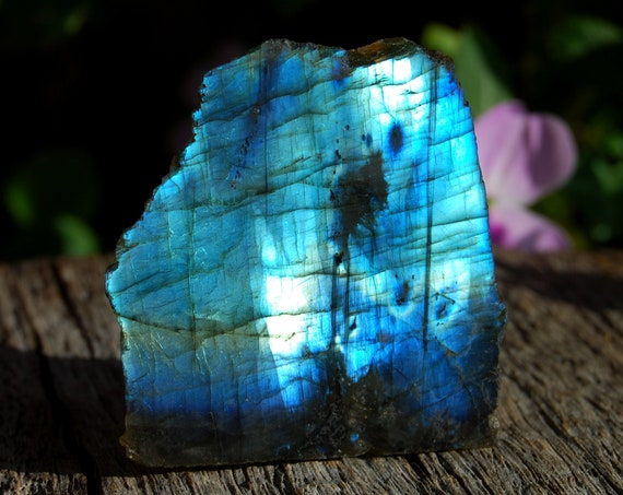 Blue Flash Labradorite Slab, 79 Grams, 2.78 Ounces.  Polished on One Side, Madagascar