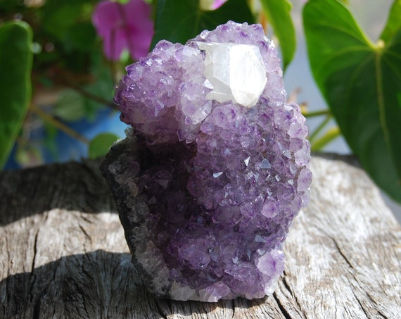Amethyst Cluster with Calcite Crystal Natural Untreated Specimen Mineral