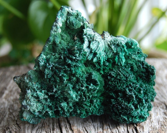 Raw Malachite Cluster - 214 grams, Specimen from Congo, Mineral Natural Untreated
