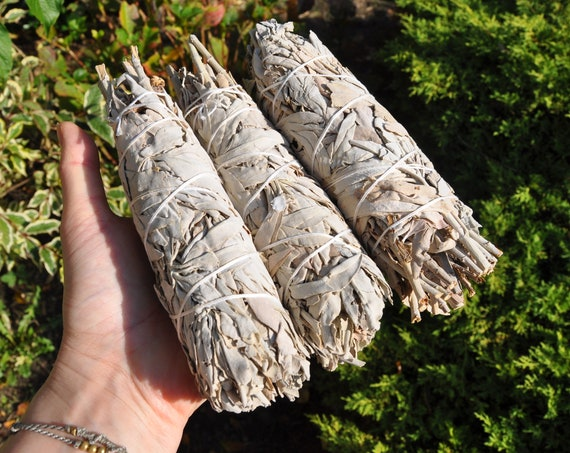 "Large White Sage Smudge Stick Bundle 18 cm - 7"" - 60 grams - 2.11 Oz"
