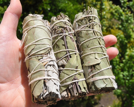"Eucalyptus and White Sage Smudge Smudging Stick Bundle  10 CM - 4"""