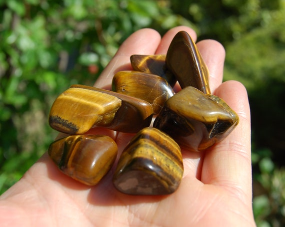 SEVEN Tiger's Eye Crystals LOT, Polished Stones, Whole set, 58 grams - 2 ounces - FREE Shipping !