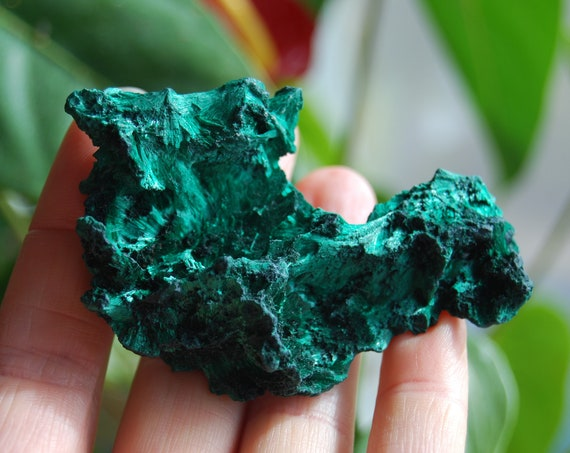 Fibrous Velvet Malachite Cluster from Congo Mineral Natural