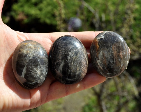 Black Moonstone Larg Palm Stone, Polished