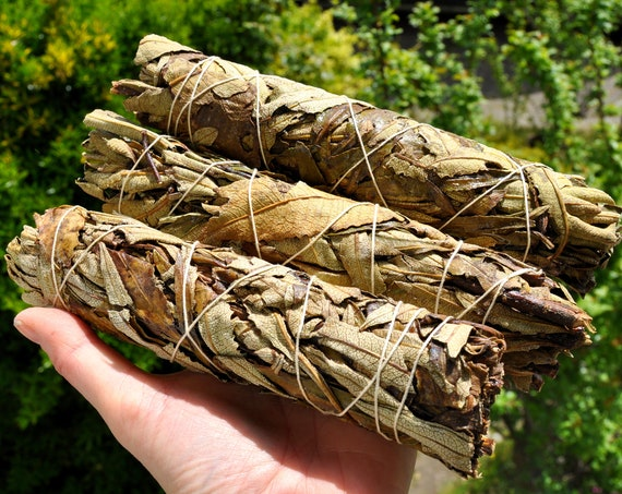 "20CM Large Yerba Santa Smudge Stick - 75 Grams - 7.8"" Cleansing"