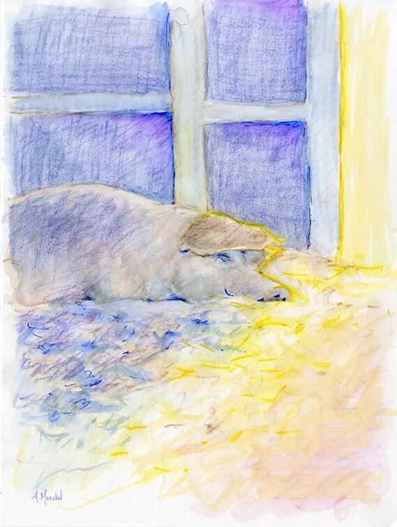 Sleeping Pig #2, Watercolor Painting