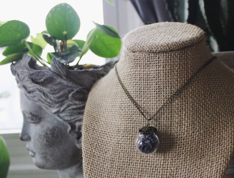 Small Brass Top Glass Pendant with Real Organic Lavender