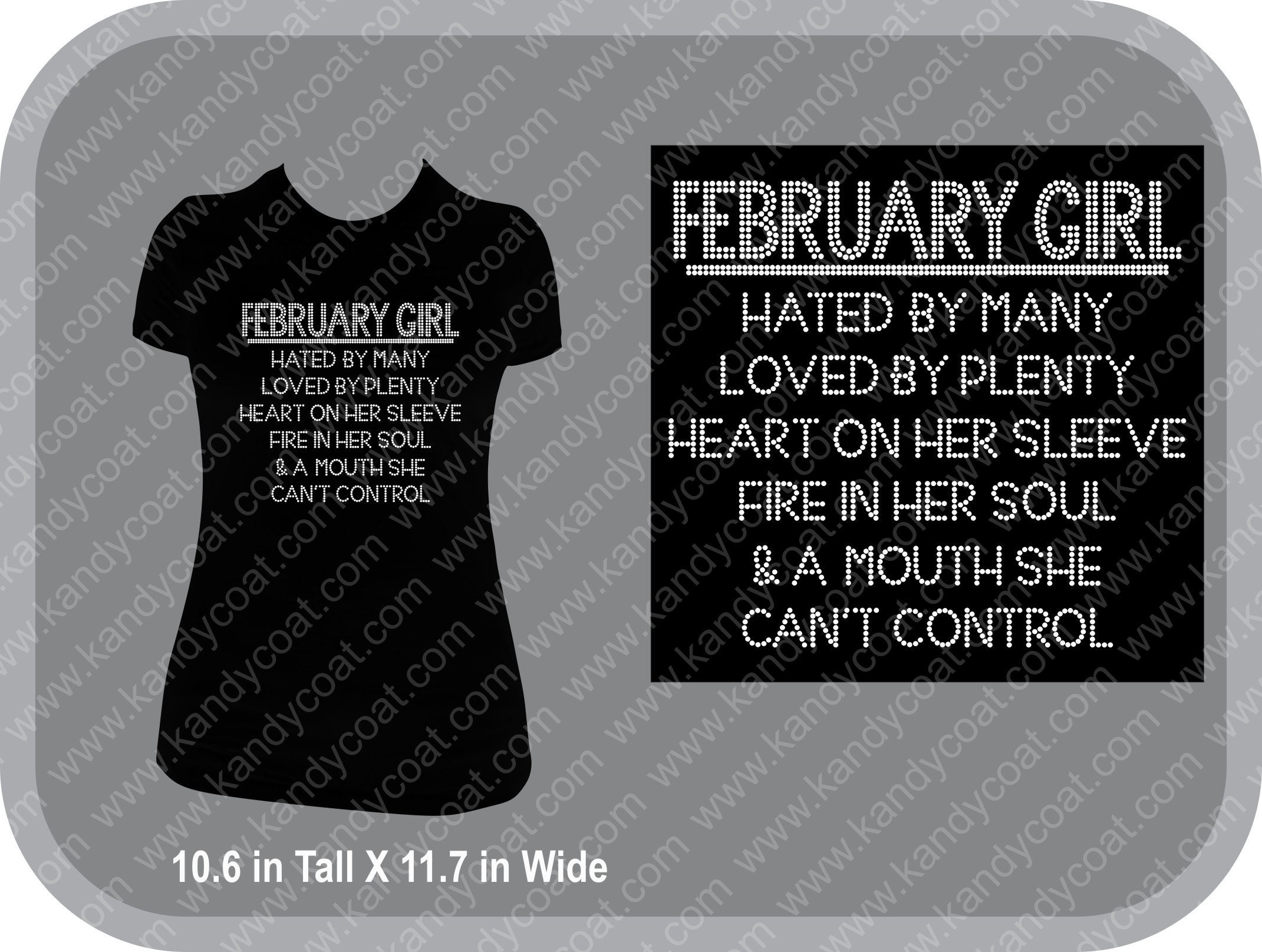 1900ee9dc4a8 February Girl Bling Rhinestone Tee All Months Available