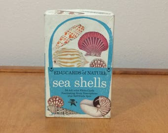 Ed-U-Card of Nature Sea Shells 1961 - Set of 54