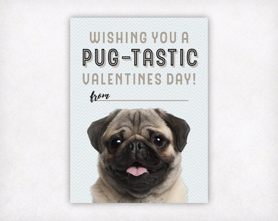 Pug Valentine Card Kids Printable Valentines Day Cards Etsy