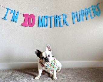Dog Birthday∙ Dog Birthday Banner ∙ Happy Birthday Mother Puppers ∙ Dog Birthday Decoration ∙ Lets Pawty ∙ Puppy Birthday ∙ Dog Birthday
