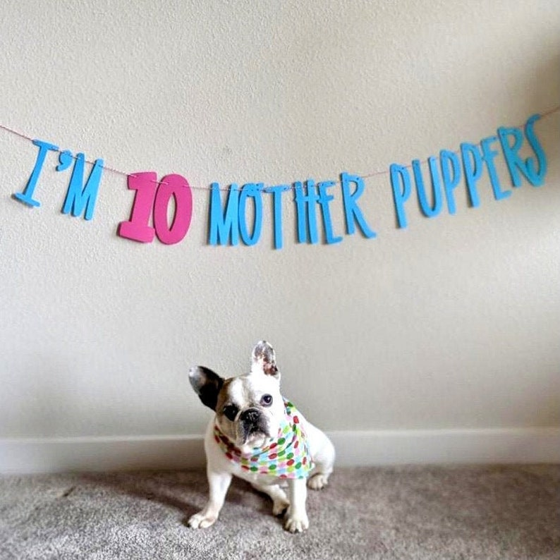 Dog Birthday Banner  Happy Birthday Mother Puppers  Dog image 0