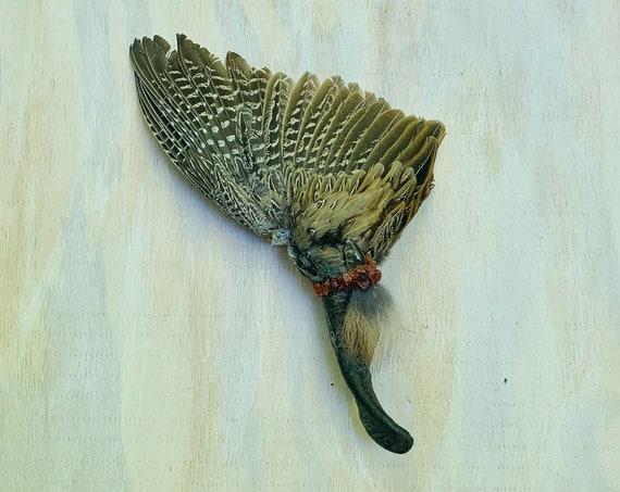 Pheasant Smudge Fan, Goat, Garden Quartz, Carnelian, Fox Shamanic Ceremonial Medicine Tool, Clearing, Healing, Wing