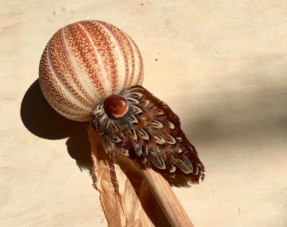 Sea Urchin, Canarywood, Unakite, Ruby, Carnelian, Pheasant Shaker, Shamanic Healing Rattle,  Energy, Native American, OOAK