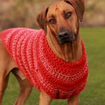 3XL Dog Sweater in Red - Odin's Red Pet Clothes - Dog Clothing - Pet Coat - Large Breed Dogs- Large, XL, 2XL, 3XL, 4Xl, 5XL Dog Sweater