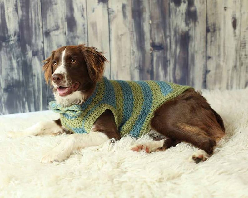 Dog Sweaters for XS to Medium Breed in Blue and Green Stripe image 0