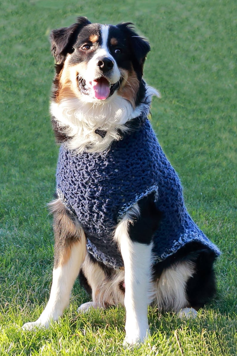 Large to 3 XL Dog Sweater in Blue  Crochet Dog Clothes  Blue image 0