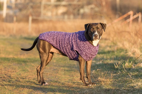 Purple Crochet Dog Sweater For Large Extra Large And Extra Etsy