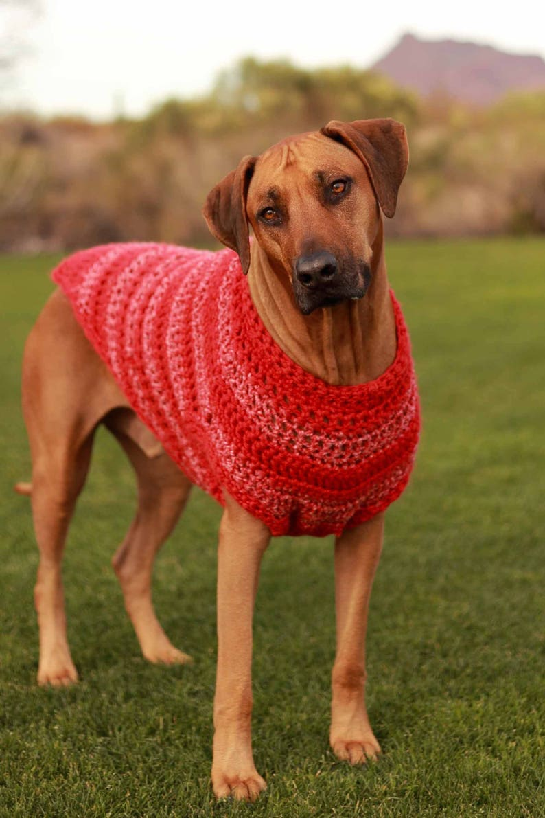 4 XL to 6 XL Dog Sweater in Red  Odin's Red Pet Clothes  image 0