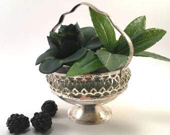 Faux succulent plant floral arrangement in vintage silver plate & crystal handled sugar bowl marked Raimond made in England