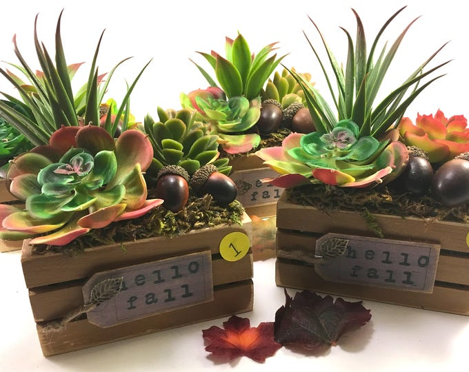 Featured listing image: Choice small wood crate handmade faux succulent & acorn floral arrangement Autumn decor 'Hello Fall' with leaf charm