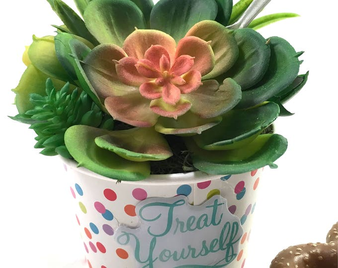 Featured listing image: Choice faux succulent plant arrangement in polka-dot paper ice cream treat cup with spoon and puffy stickers